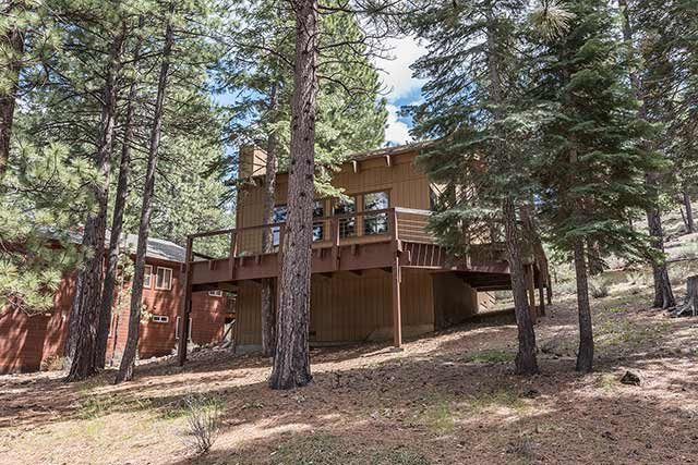 Northstar Cabin in the Trees