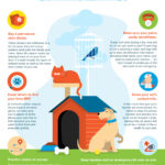 Protecting Your Pet from Fire