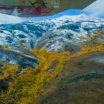 Where to find Fall Foliage Color: Truckee, Lake Tahoe, Bridgeport